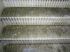 稲城市 建物 清掃