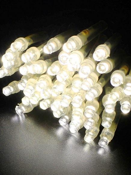 2芯LEDストリングライトVer.�U 2B100PS2 パステルシャンパン ブラックコード・100球10M