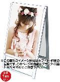 TOKISEI ポスター用スタンド看板セパレートポケットB2両面  PSSKSP-B2RB(ブラック)
