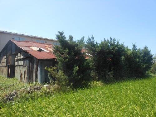 木造倉庫解体工事