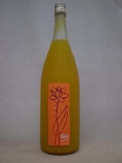 ふるふる完熟マンゴー梅酒 1800ml