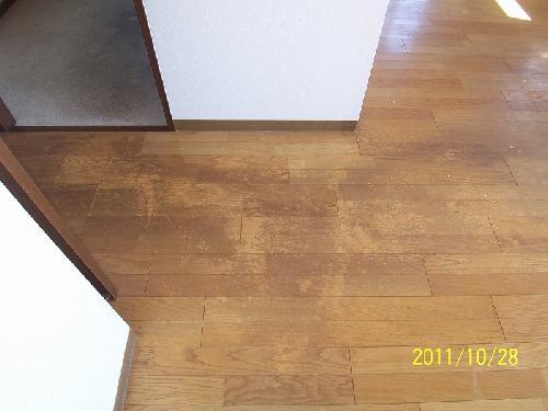 住宅/フローリング洗浄