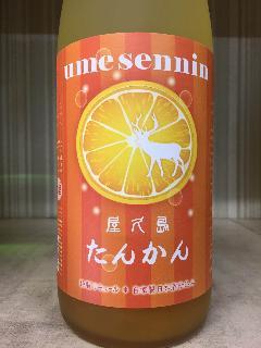 屋久島 たんかん梅酒