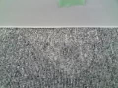 潰れたカーペットの毛を高温高圧スチームで復元した事例