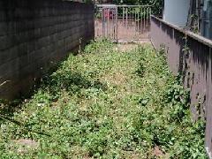 東京のアパート | 除草作業事例