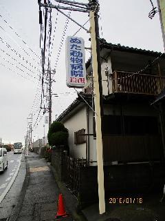 神奈川県寒川市 どうぶつ病院様の突出し看板リニューアル