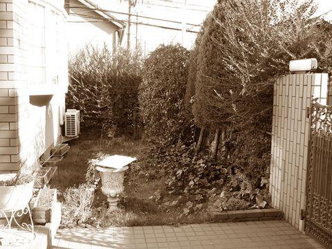 ヴァイオリニストの庭