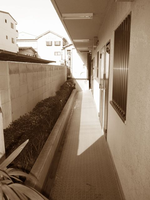 マンション植栽リフォーム(廊下)