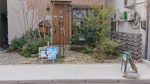 雑木の庭を10万円以下で劇的 befor & after