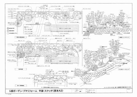 庭園提案事例  (庭園Before&After イメージスケッチ堺 手描きパース)