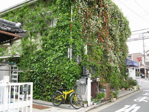 第一回堺市花と緑の人のふれあいコンクール  環境緑化賞受賞