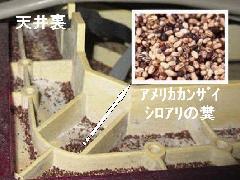 アメリカカンザイシロアリの駆除施工 (神奈川県)