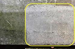 防カビ効果のある光触媒塗料:インラッシュコート