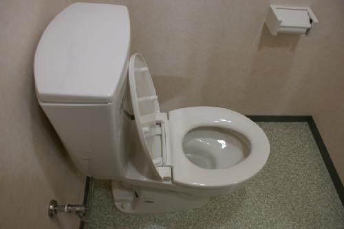 便器の尿石
