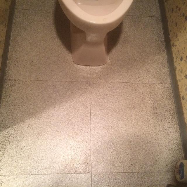 トイレ清掃事例