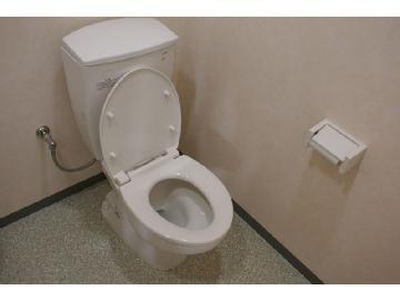 トイレ、尿石除去