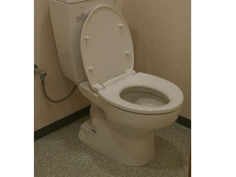 トイレ 尿石除去