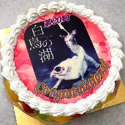 素敵なバレエのパンフレットで記念のお祝いデコ 6号