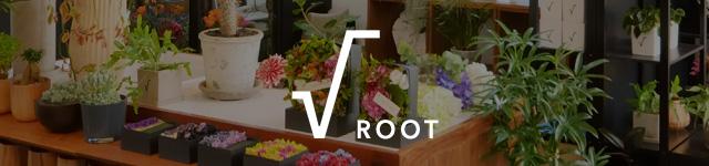 姉妹店 √:root