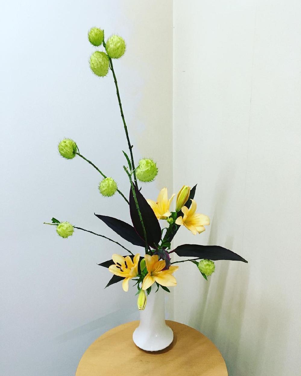 このチクチクしたお花なんて名前でしょう?