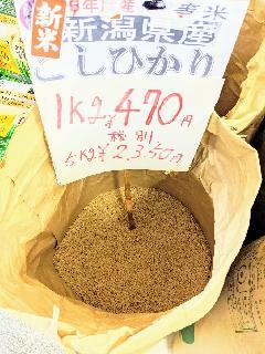 新潟県産新潟こしひかり 令和3年 1等  玄米1kg