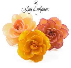 """Ami d'enfance AA1001-140026 """"Lta"""" Ring"""