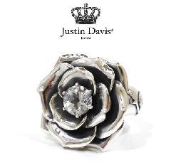 Justin Davis srj212 Inner Beauty