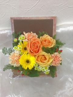BOOK BOX  オレンジ