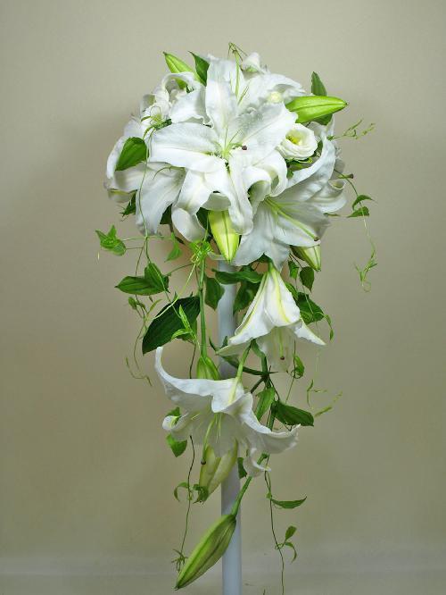 カサブランカ (植物)の画像 p1_28
