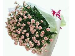 ピンク枝咲きバラ20本