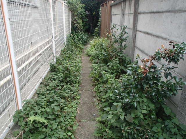 杉並区荻窪の戸建て 除草・剪定作業