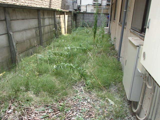 荻窪5丁目 マンションの除草・剪定作業