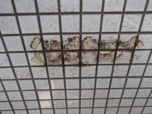 小金井市 マンション 壁面シールはがし及び清掃
