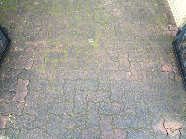 杉並区マンション アプローチのインターロッキング清掃
