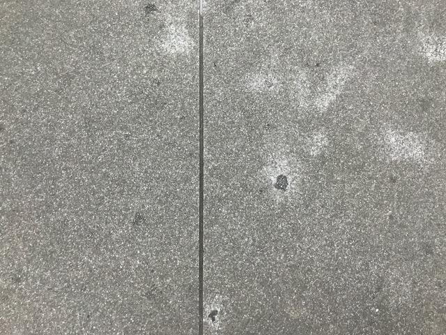 杉並区雑居ビル エレベーター内ガム除去及び床面洗浄