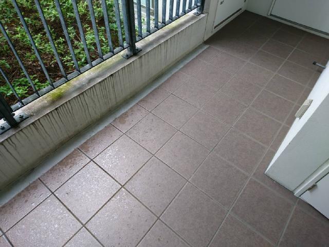 床面及びフェンス下壁面 雨垂れ・苔除去