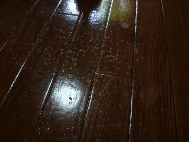 床面洗浄ワックス塗布仕上げ