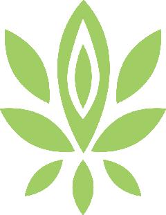花・葉15