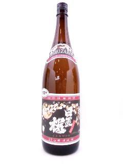 日置桜 夜桜ラベル Ver.1 1800ml