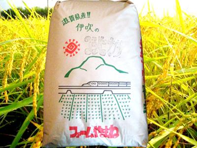 コシヒカリ 玄米30kg分の白米