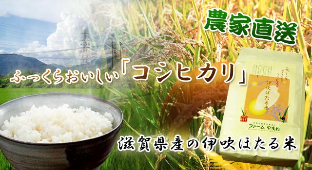 滋賀の農家直送コシヒカリ米 伊吹ほたる米