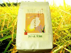 コシヒカリ 白米10kg