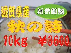 28年度産秋の詩10kg¥3600