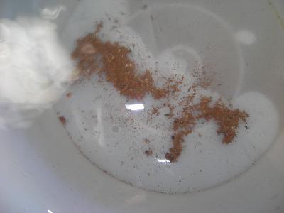 底に溜まっているのは排出された錆ですが、水が非常に綺麗になっているのがわかります。