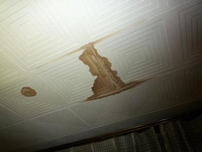 排泄した尿が積み重なれば、天井のシミに!