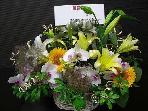 ひまわりと胡蝶蘭のアレンジメント