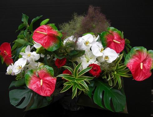 アンスリュームと胡蝶蘭のアレンジメント
