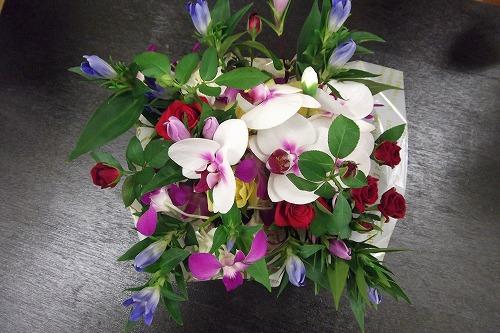 リンドウと胡蝶蘭のアレンジメント