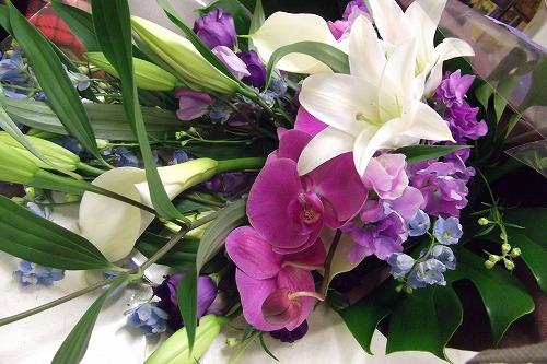 デルフィニュームと胡蝶蘭の花束