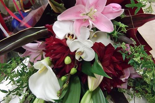 ダリアのゴージャス花束